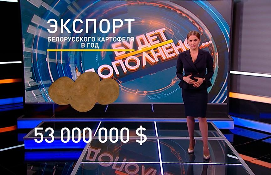 Уборочная близится к завершению: что Беларусь будет продавать, а что оставит себе? Рубрика «Будет дополнено»