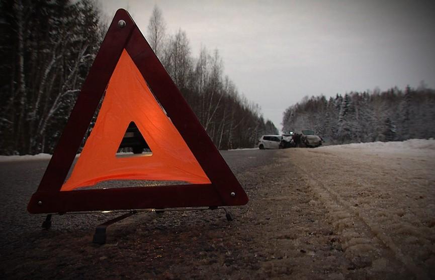 Дорожный треугольник с трагическим финалом. Два легковых автомобиля и лось не разминулись в Вилейском районе