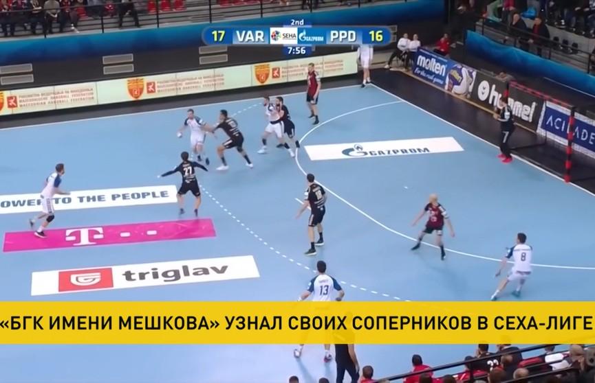 БГК имени Мешкова узнал своих соперников по групповому раунду гандбольной СЕХА-лиги