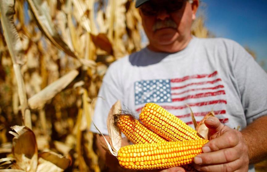 Вечеринка вместо работы: в Иллинойсе фермеры решили не работать после наводнения