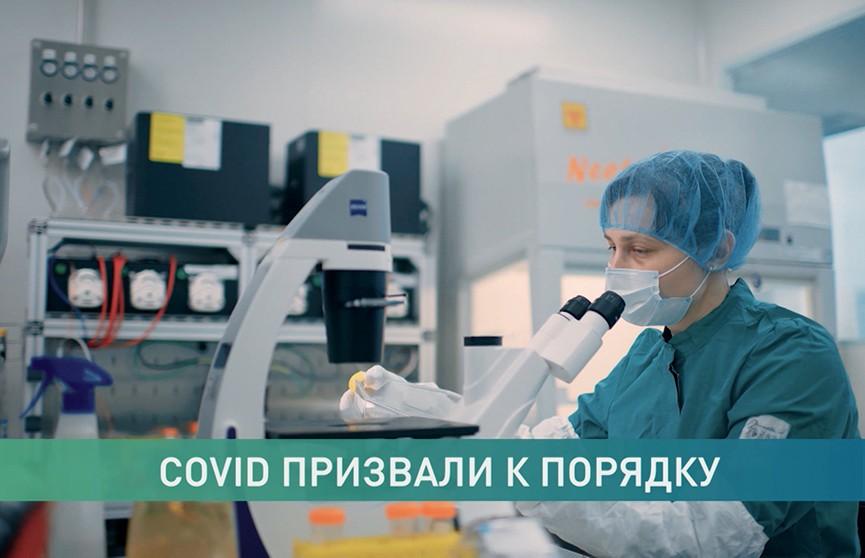 EPAM разработала и передала Минздраву сервис слежения за COVID-19