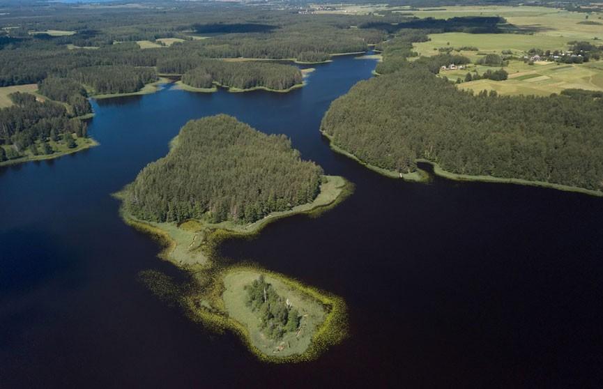 В озере Долгое Браславского района обнаружен труп женщины