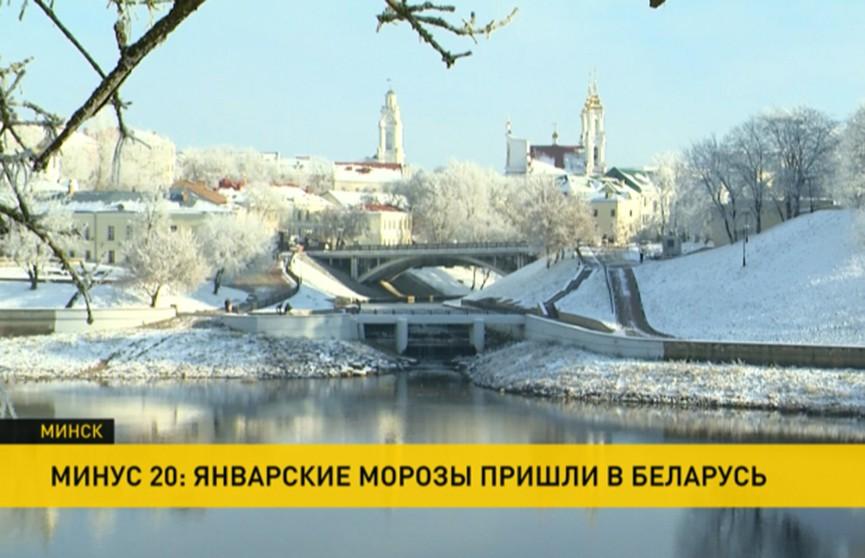 Подморозило: как белорусы пережили -20°С?