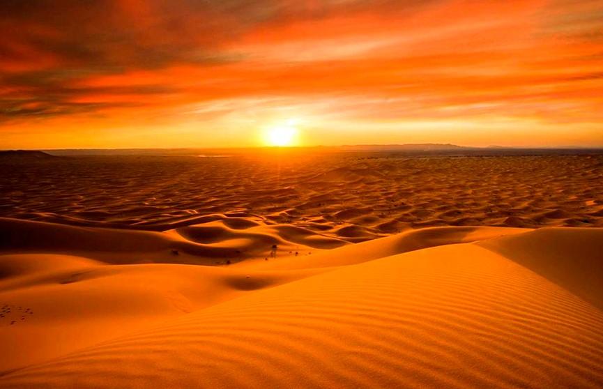6-летняя девочка умерла в пустыне Аризоны, пока её мама искала воду