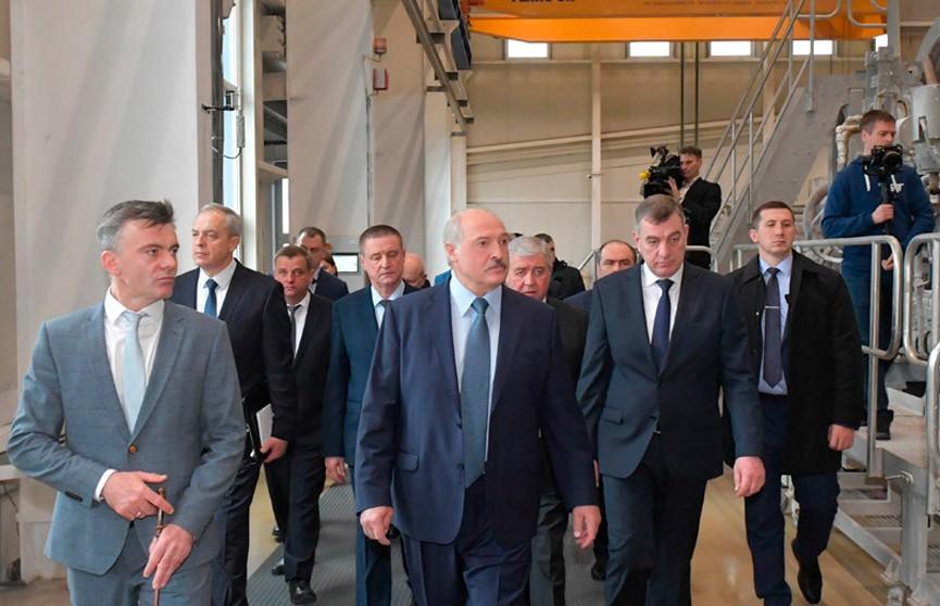«Почему у тебя дохнет молодняк? Ответь!» Лукашенко жестко раскритиковал чиновников в Шклове