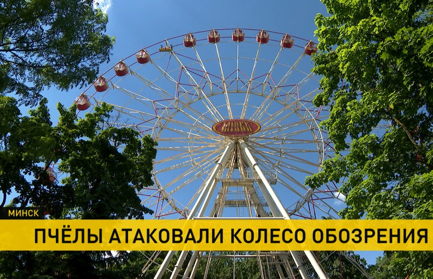 Колесо обозрения в столичном парке Горького атаковали пчелы