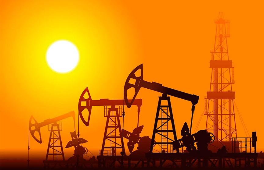 Цена нефти марки Brent впервые за год достигла $55