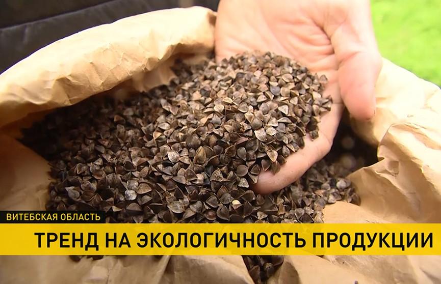 Мода на экологичность: какие натуральные продукты производят в Беларуси?
