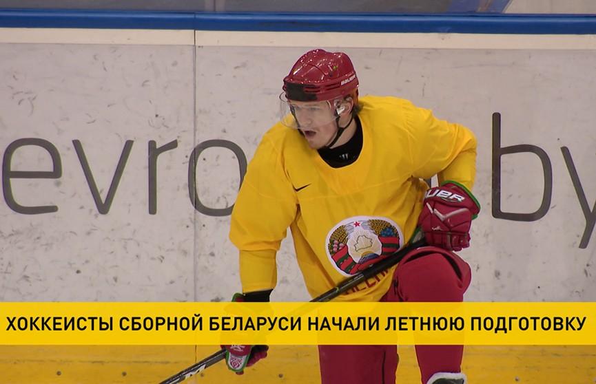 Хоккеисты сборной Беларуси начали летнюю подготовку