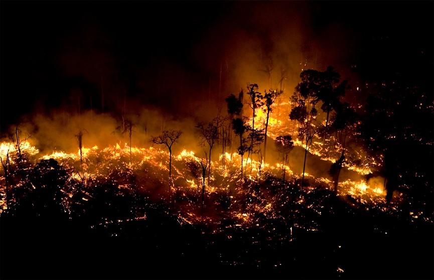 На борьбу с пожарами в лесах Амазонии отправили армию