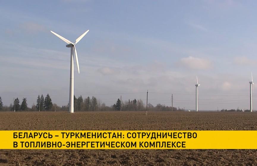 Беларусь и Туркменистан обсудили сотрудничество в топливно-энергетическом комплексе