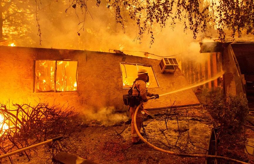Число жертв лесных пожаров в Калифорнии возросло до 48