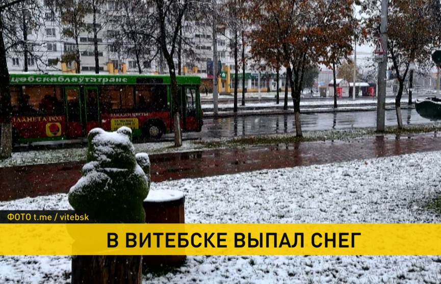 В Беларуси выпал первый снег