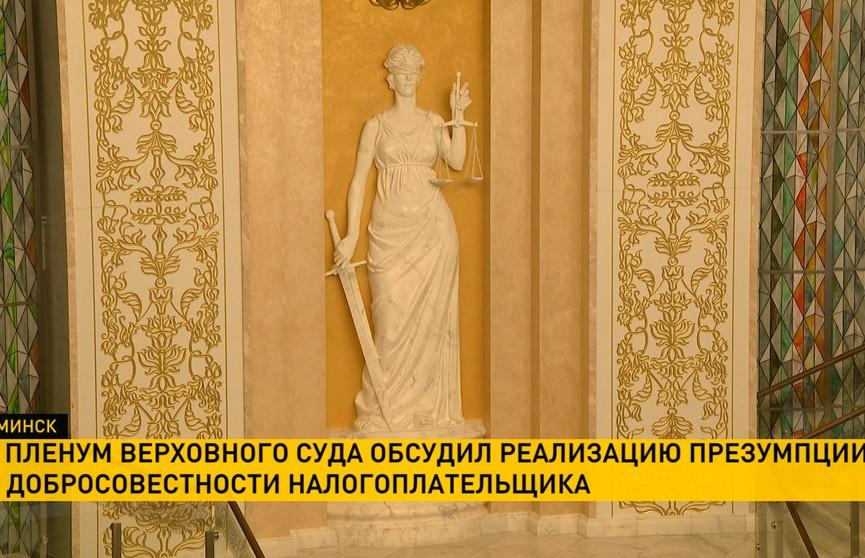 Пленум Верховного суда обсудил реализацию презумпции добросовестности
