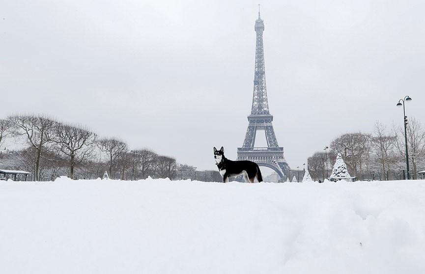 Эйфелеву башню закрыли для посетителей из-за снегопада