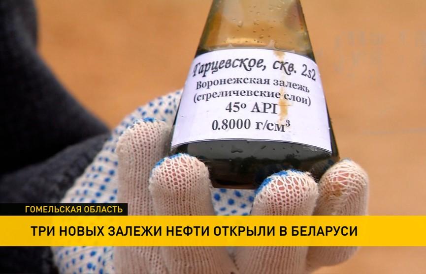 Новые залежи нефти в Беларуси: при испытании на большой глубине получен приток до 100 тонн в сутки