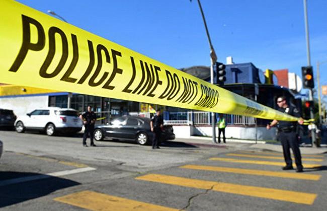 Двое детей погибли в США в ДТП с участием угнанного полицейского авто