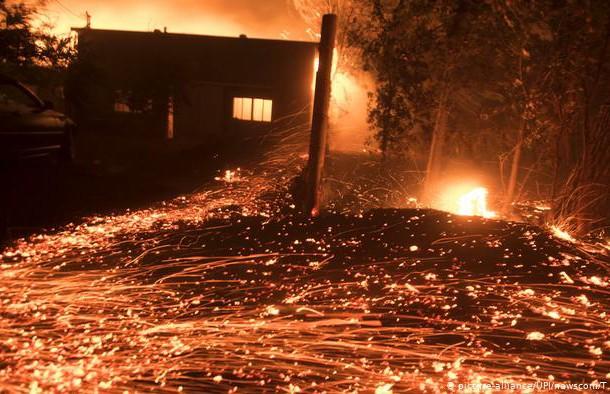 Из-за сжигания еловых веток могла сгореть целая деревня в Березинском районе