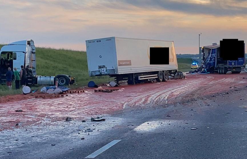 ДТП с участием томатов превратило дорогу в «кровавое» месиво