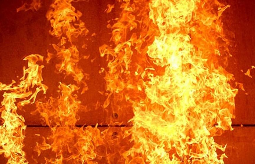 Мужчина загорелся от костра в Волковыске