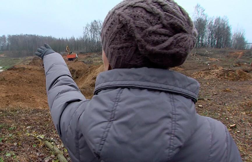 В Сухарево вырубают берёзовую рощу ради строительства паркинга