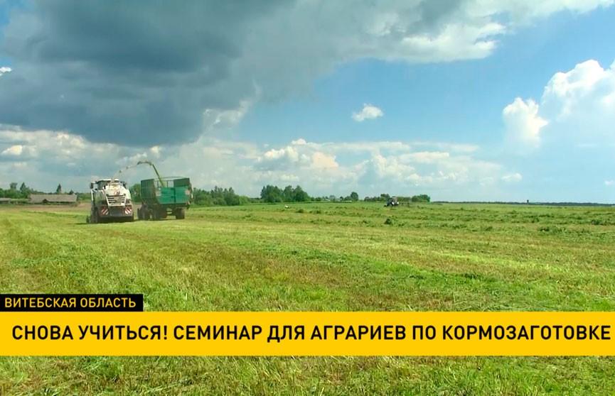 Семинар для аграриев по кормозаготовке проходит в Витебской области