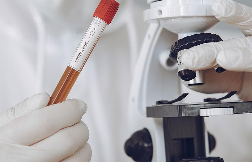 Ученые рассказали об эффективности лекарства от гепатита в борьбе с COVID-19