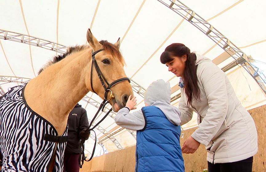 Мальчик с детским церебральным параличом смог встать на ноги благодаря лечебной езде на лошадях