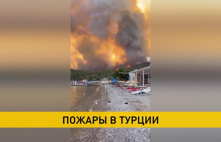Лесные пожары в Турции: восемь человек погибли, пострадавших – почти тысяча