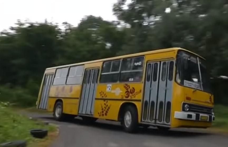 Экстремальный заезд на «Икарусе» устроили в Венгрии