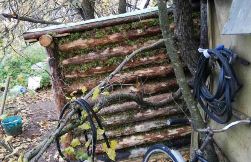 Серийный вор 6 лет жил в лесной хижине под Рогачевом, прячась от тюрьмы