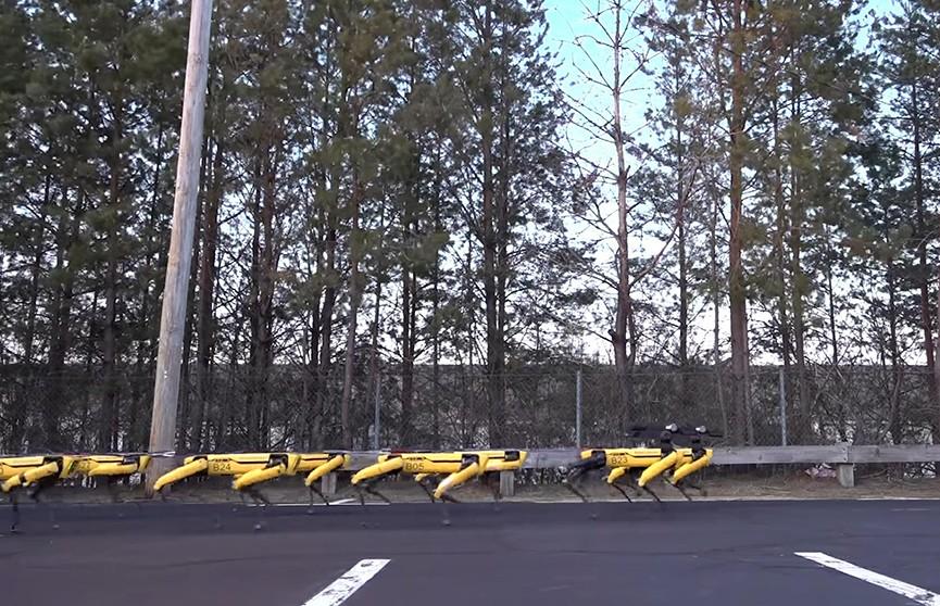 Boston Dynamics создала роботов, способных тянуть грузовик (Видео)
