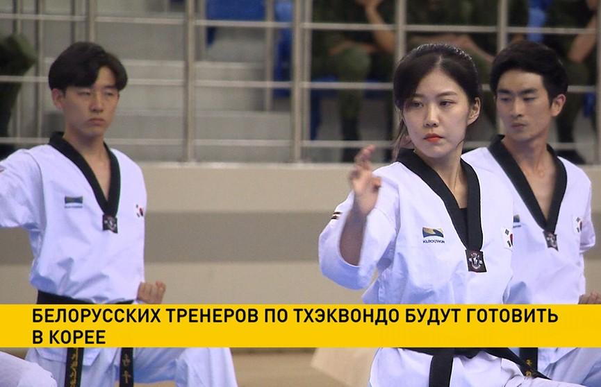 Белорусских тренеров по тхэквондо будут готовить в Корее