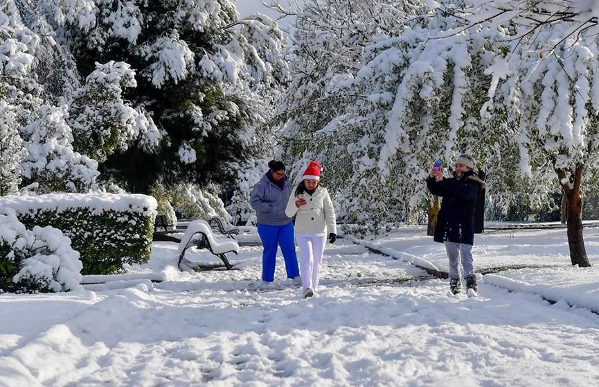 Мексику замело: снежные сугробы выросли в 20 штатах