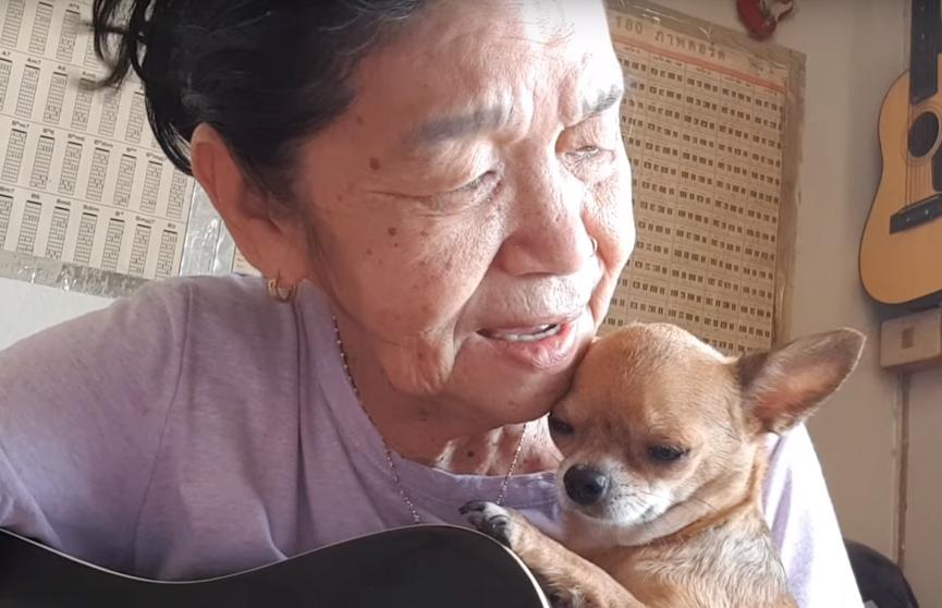 66-летняя женщина в компании чихуахуа записывает музыкальные ролики для YouTube (ВИДЕО)