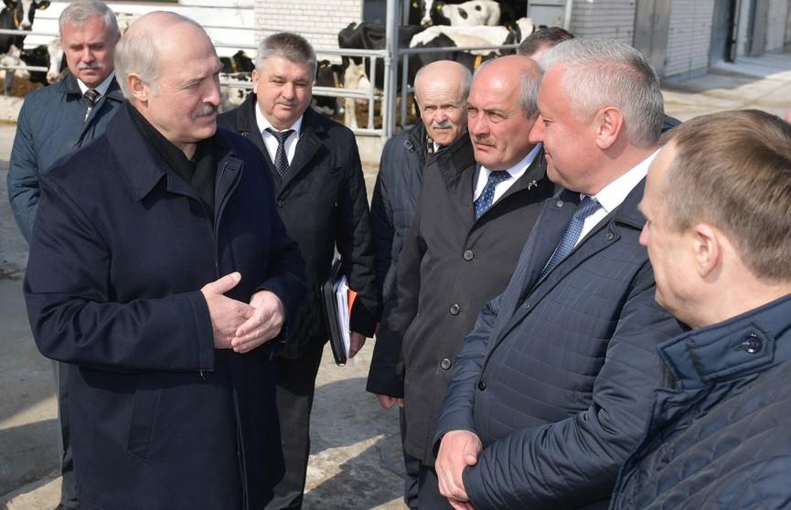 Александр Лукашенко посетил Логойский район и проинспектировал ход весенне-полевых работ