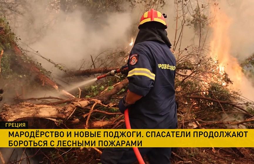 В Греции, пока спасатели борются с лесными пожарами, в стране – мародерство и задержания