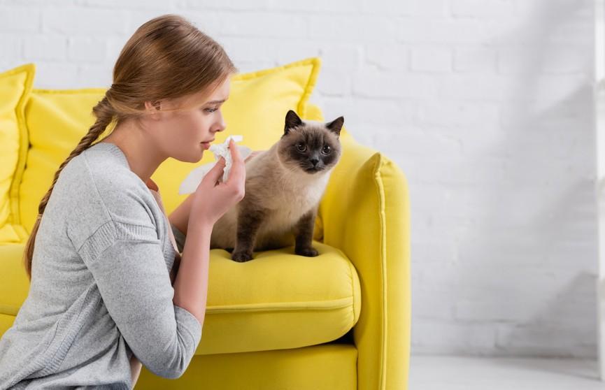Хозяйка плакала, а кошка вытирала ей слезы. Посмотрите, это невероятно трогательно! (ВИДЕО)