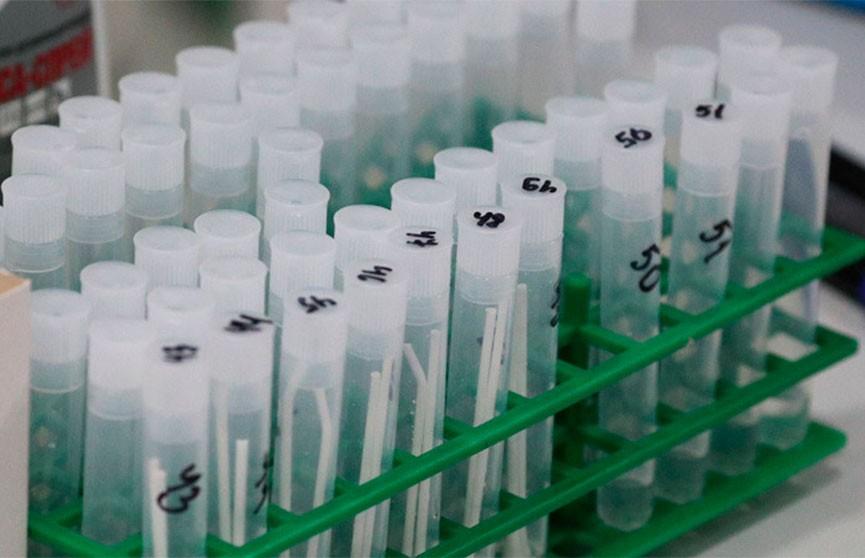 Игорь Петришенко: российская компания поставит в Беларусь 30 тыс. тестов на коронавирус