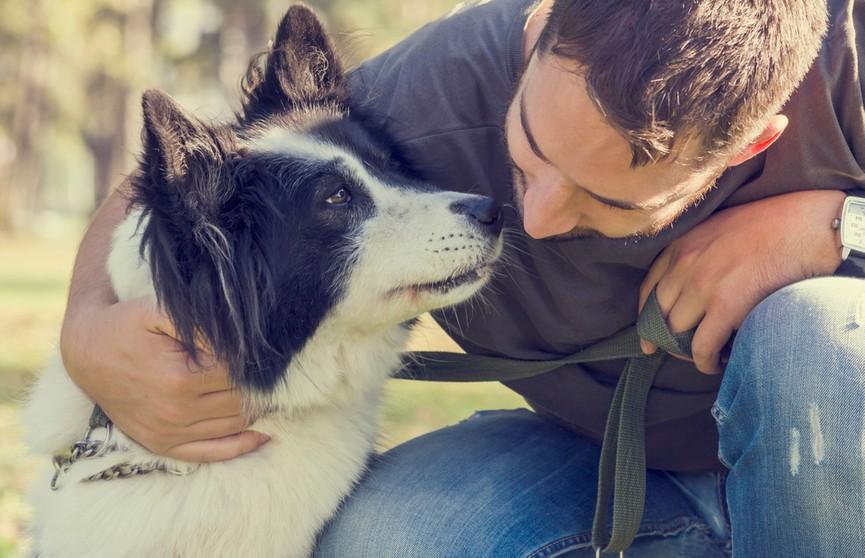 Собака обожает хозяина, но вот как она показывает свою любовь. Посмотрите, выглядит устрашающе! (ВИДЕО)