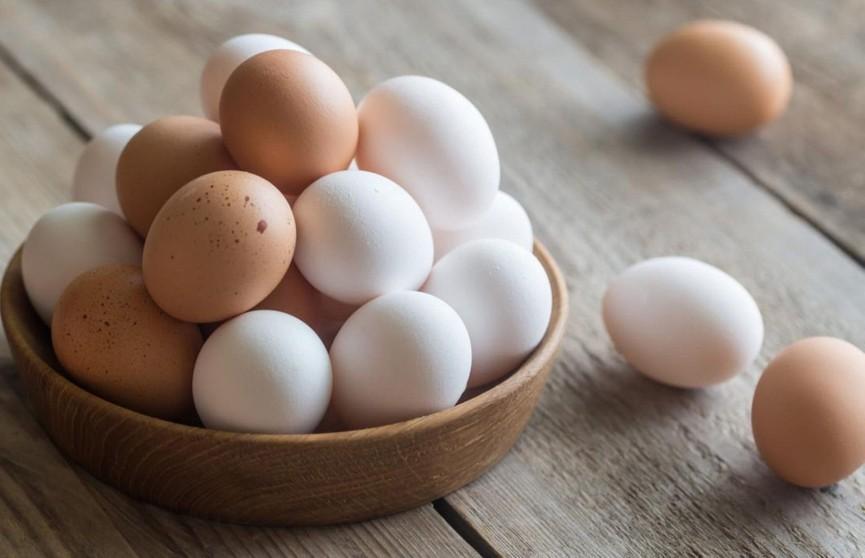 Чем белые яйца отличаются от коричневых? Это нужно знать всем!