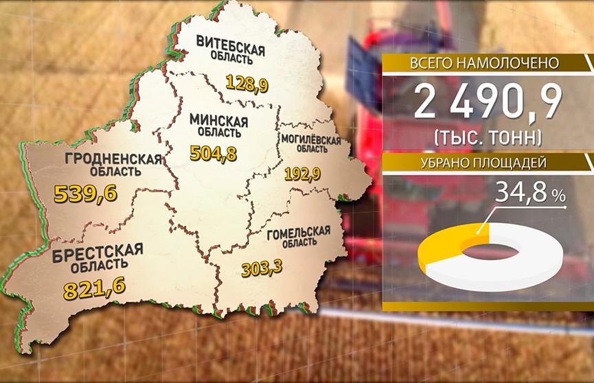 Уборочная-2019: аграрии приближаются к цифре 3 млн тонн