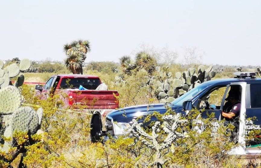 Полицейские обнаружили тела 13 человек в двух автомобилях в центральной части Мексики