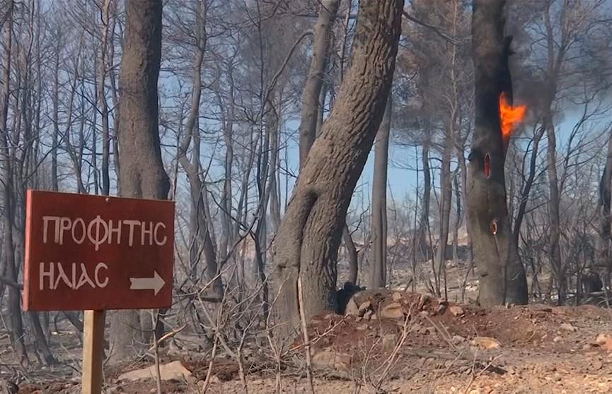 Огонь приближается к населённым пунктам в Греции