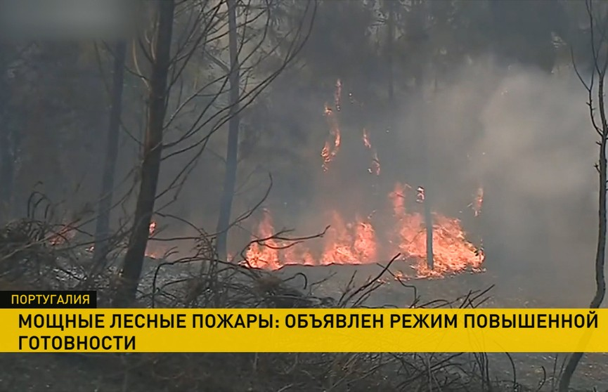 Лесные пожары в Португалии: сотни спасателей борются с огнем