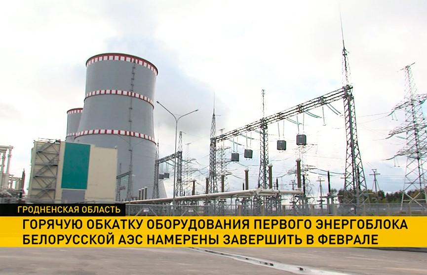 На первом энергоблоке БелАЭС продолжают горячую обработку оборудования