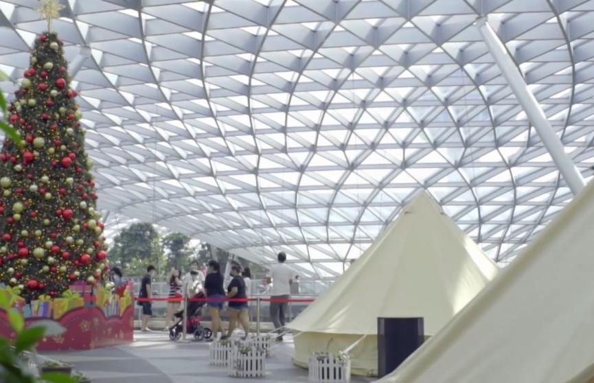 В Сингапуре открыли необычный кемпинг. Его разбили прямо в аэропорту