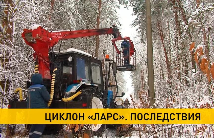 В Брестской области устраняют последствия циклона «Ларс»: 140 населенных пунктов остались без электричества