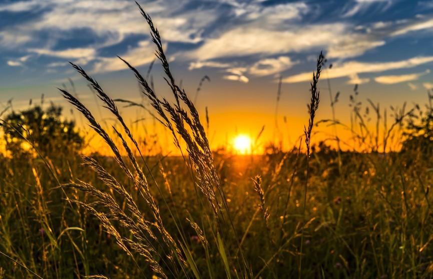 Новые температурные рекорды установлены в Беларуси за всю историю наблюдений