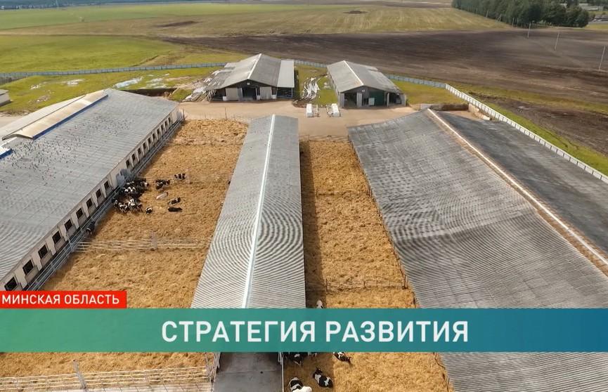 Лукашенко: «Каждый клочок земли должен быть обработан». Итоги рабочих поездок Президента по регионам